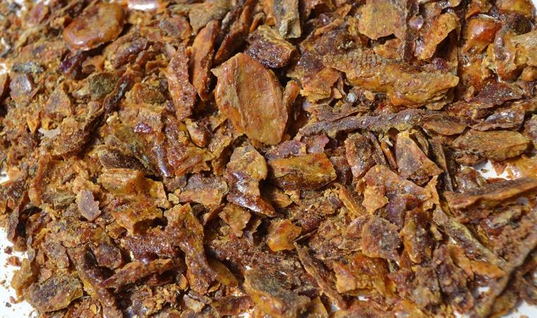 bienfait du miel propolis
