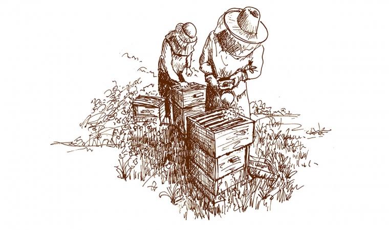 miel cretet histoire